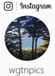 wgtnpics on Instagram